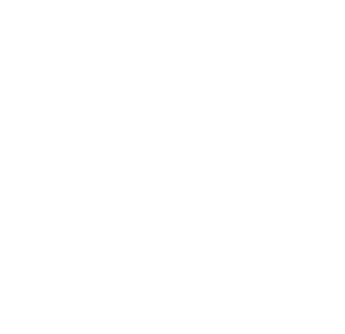 Logo Miss Hits